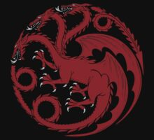 Fire and Blood  Kids Tee
