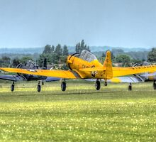 Harvard Takeoff  by Nigel Bangert