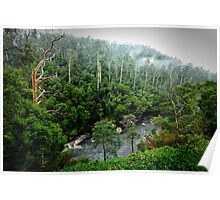 Leven river valley Poster