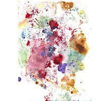 Abstract Floral Study Photographic Print