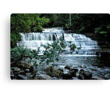 Liffey falls near Launceston Canvas Print