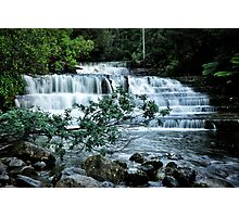Liffey falls near Launceston Photographic Print