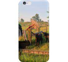 Deutz D 6807 iPhone Case/Skin