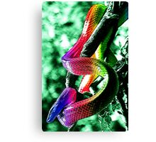 Snake Surreal Canvas Print
