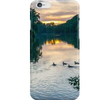 Ducks at Dusk iPhone Case/Skin
