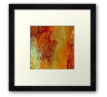 Hey Tangerine! Framed Print