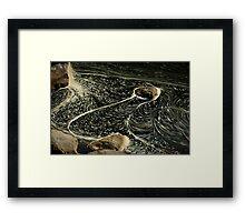 Cataract Gorge, Launceston Framed Print