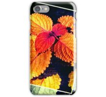 Singled Out iPhone Case/Skin