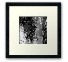 BLACK AND WHITE SPLASH! Framed Print