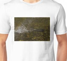 Of Fishes and Rainbows Unisex T-Shirt