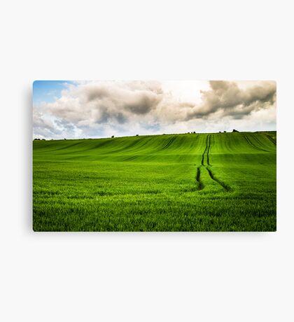 Hills of Green Canvas Print