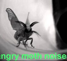 Angry Moth Noises by VespidNecro