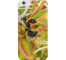 Bumble bee on honeysuckle iPhone Case/Skin