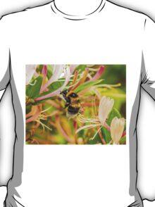 Bumble bee on honeysuckle T-Shirt