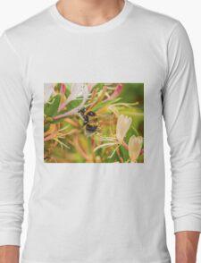 Bumble bee on honeysuckle Long Sleeve T-Shirt