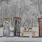 Hillbilly Yard Sale by Dyle Warren