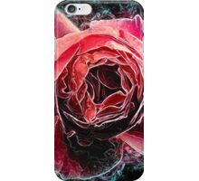 Pink English rose as seen from above  iPhone Case/Skin