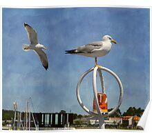 Two seagulls and a hooter Poster