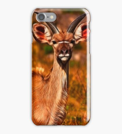 Young Kruger Kudu iPhone Case/Skin