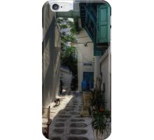Where cats like to walk iPhone Case/Skin