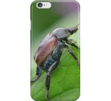Welsh Chafer iPhone Case/Skin