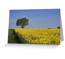 Sprouting Greeting Card