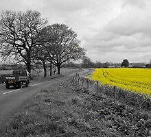 Cheshire | Rapeseed Field 01 by Pete Edmunds