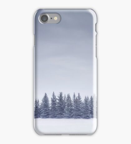 Winterscape iPhone Case/Skin