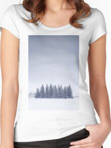 Winterscape Women's Fitted Scoop T-Shirt
