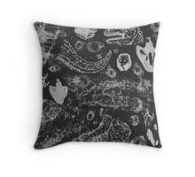 Dinosaur Studies Throw Pillow