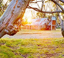 Wallace Hut, Falls Creek, Victoria, Australia by Michael Boniwell