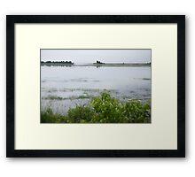 A Misty Marsh Framed Print