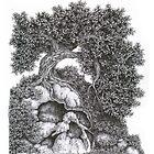 Skull Rock by Tedd Vallance
