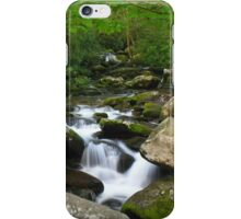 Roaring Fork iPhone Case/Skin