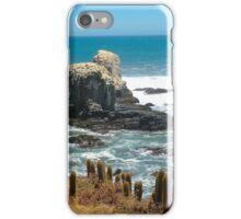 Punta de Lobos .....! iPhone Case/Skin