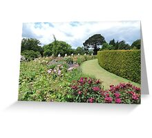 Lawn Through Flowers Greeting Card