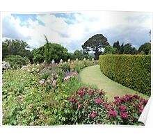 Lawn Through Flowers Poster