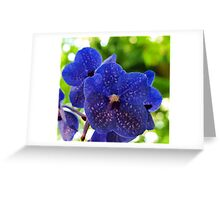 Orchids On My Pillow Greeting Card