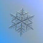 Majestic crystal, real snowflake macro photo by Alexey Kljatov