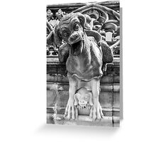 Munster Cathedral Gargoyle - Bern - Switzerland Greeting Card