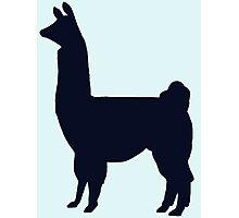 Blue Llama Silhouette Photographic Print