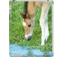 Waters Edge iPad Case/Skin