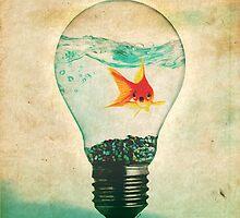 Fish Bulb by Daniel Watts