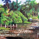 Creek at Phillips' Park by Jim Phillips
