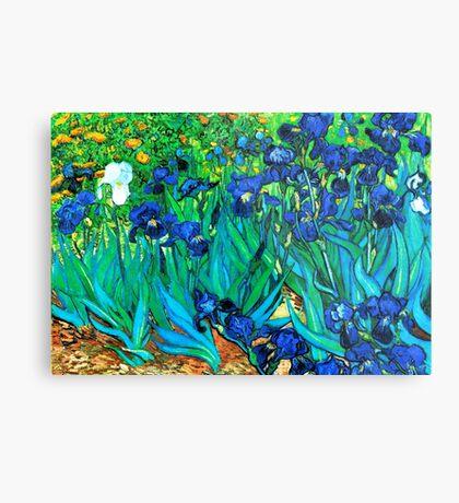 Van Gogh Garden Irises HDR Metal Print