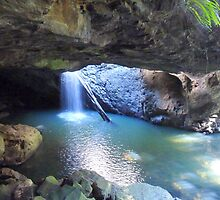 Natural Arch ,Natural Bridge , Springbrook forest via Numinbah  by Virginia  McGowan