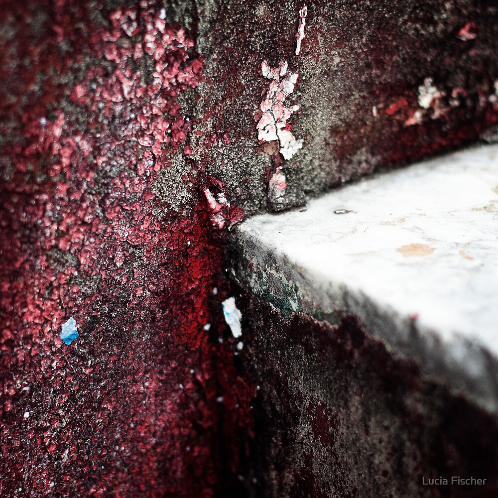 { Corners: where the walls meet #06 } by Lucia Fischer