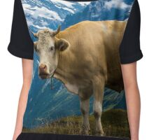 Grindelwald Cow - Bernese Alps - Switzerland Chiffon Top