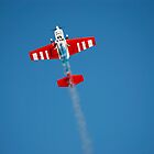 rc airplane by pifate