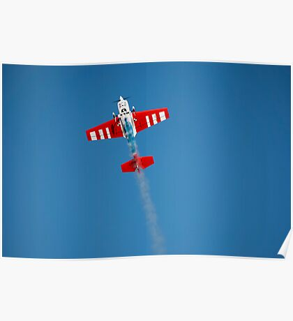 rc airplane Poster